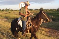 Cowboy hoch zu Ross